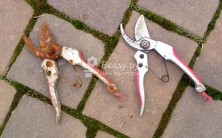 Как убрать ржавчину с лопаты