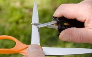 Как заточить парикмахерские ножницы в домашних условиях